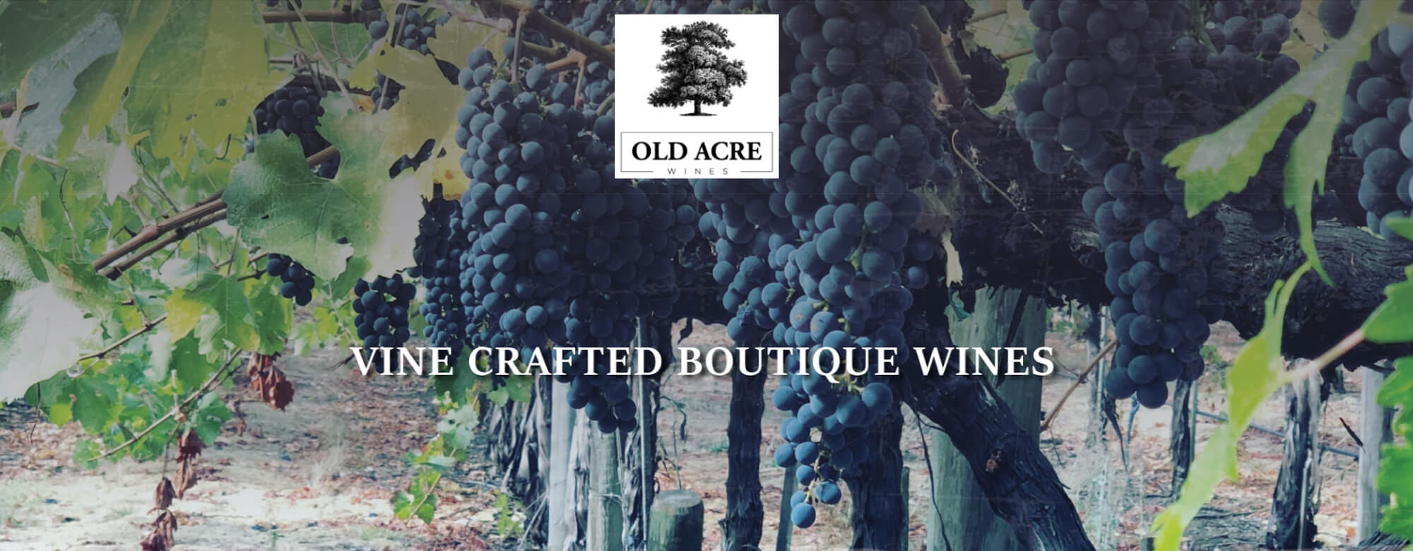 OLDACRE VINE CRAFTED BOUTIQUE WINES
